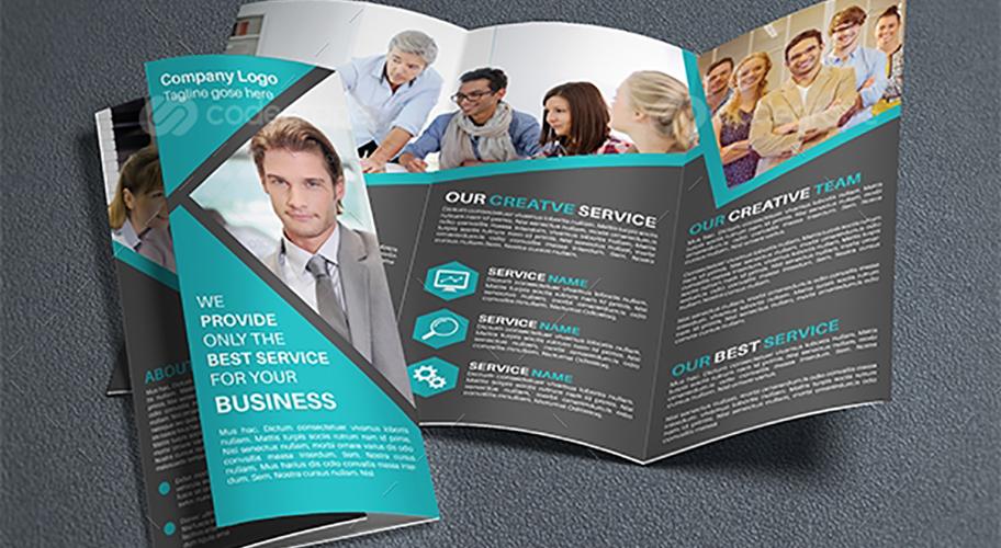 pacific panels brochure 2010 essay